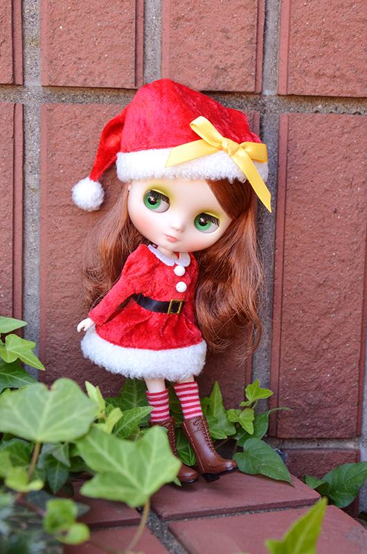 2014年11月 キラキラクリスマス(20cm)